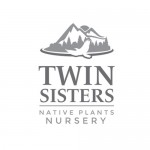 Twin Sisters roadside grass blend